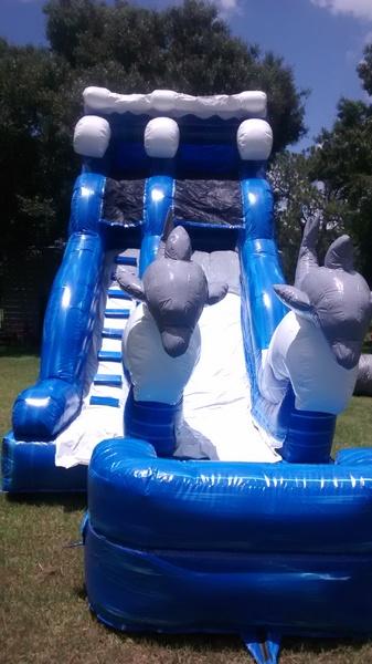 Inflatable Water Slides - Rentals Cape Coral, FL - Moonwalk & More